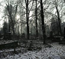 Old Cemetery by mackozer