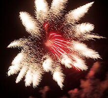 Firework Flower by Carol Saunders