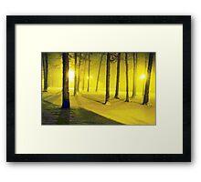 Snow / Bathed In  Golden Light    Framed Print