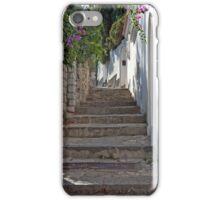 Primavera A Capri iPhone Case/Skin