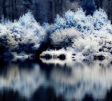 Snow Pond by Chris Summerville
