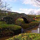 Duck Bridge by Trevor Kersley