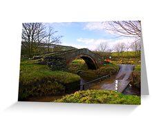 Duck Bridge Greeting Card