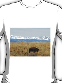 Buffalo and the Rocky Mountains T-Shirt
