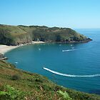 Cornwall: Lantic bay by Rob Parsons