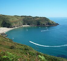 Cornwall: Lantic bay by Rob Parsons