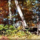 Wagon Wheels by Catherine Mardix