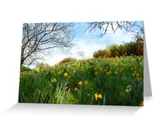 Spring, my favorite time of year Greeting Card