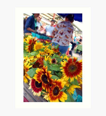 Farmers Market Sunflowers Art Print