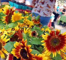 Farmers Market Sunflowers by ckroeger
