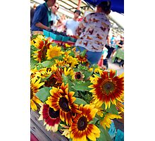 Farmers Market Sunflowers Photographic Print