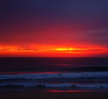 Dawn of a New Era  by Of Land & Ocean - Samantha Goode