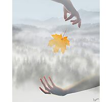 Transition Photographic Print