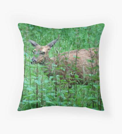 A Doe A Deer Throw Pillow