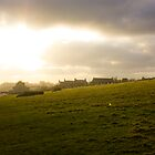 Dunstanburgh 1 by rafolio