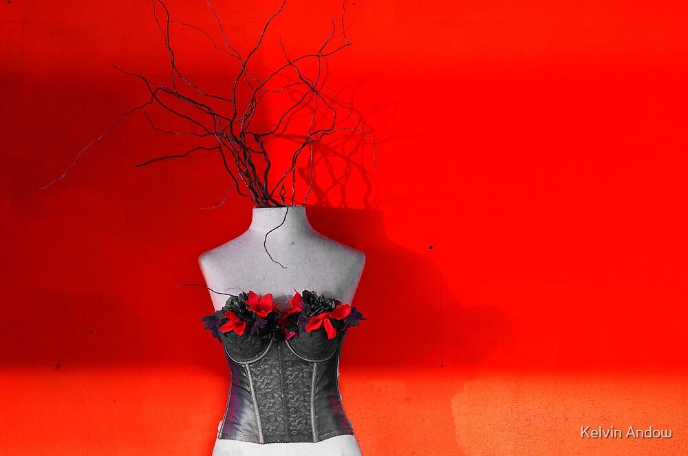 Red by Kelvin Andow