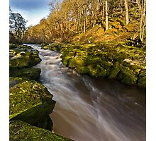 The Strid, Wharfedale Photographic Print
