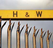 H&W by Alan McMorris
