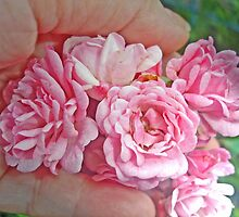 Hand- Full of Roses by Margie Avellino