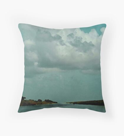 The Everglades Throw Pillow