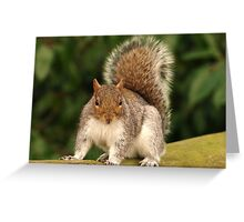 What! Greeting Card