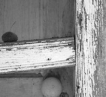 Windows & Doors by KDPhotos
