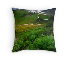 From the Top Throw Pillow