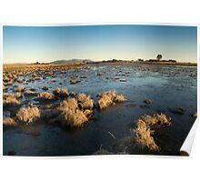 Santa Rosa Plateau Reserve vernal pool Poster