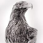 Wedge tailed eagle by Melanie Deroon