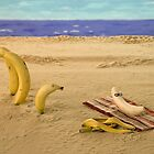 The banana nude beach by David Jones