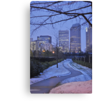 just a walk Canvas Print