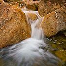 Eurobin Creek cascades by Neil