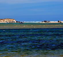 photoj South Australia,South-Coorong National Park by photoj