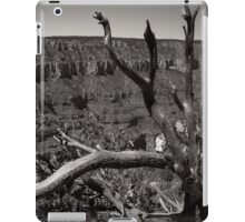 I Am Strong and Visible iPad Case/Skin