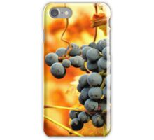 Grape Vines in Autumn iPhone Case/Skin
