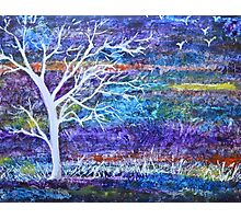 Abstract Landscape tree Photographic Print