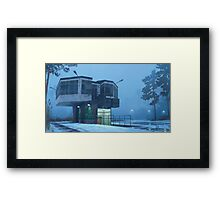 The City Council Dreams Of Flowers Framed Print