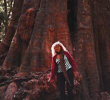 Visiting the Big Tree at Dip Falls by cradlemountain