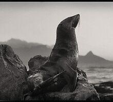 Cape Town by BlaizerB