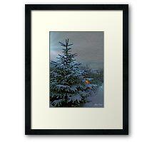Winter Wonderland. Framed Print
