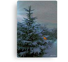 Winter Wonderland. Canvas Print