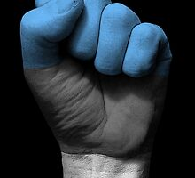 Flag of Estonia on a Raised Clenched Fist  by Jeff Bartels