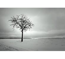 Stand alone Photographic Print