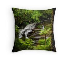 Looking through Nature's Frame Throw Pillow