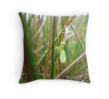 grasshopper reflecting Throw Pillow