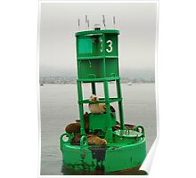 California sea lions resting on a Santa Barbara harbor buoy. Poster