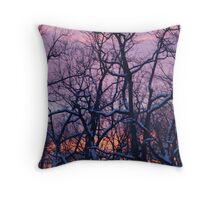 Colors Over a Winter Sky Throw Pillow