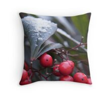 snow on the holly Throw Pillow