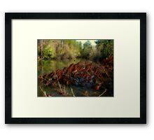 The Hidden Pond Framed Print