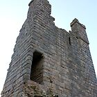 Dunstanburgh Castle, Northumberland 6 by rafolio
